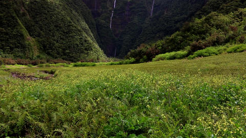 La Reunion le Grand Etang valley with waterfalls and mountains dolly shot Footage