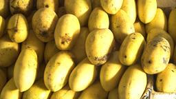 Mango in the fruit market Footage