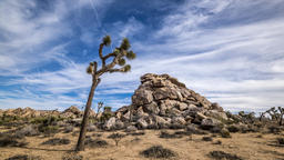 Clouds over Joshua Tree Desert Footage