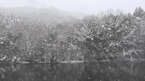 Japanese winter 2017 Footage
