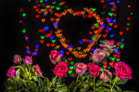Rose flowers in the heart background Photo