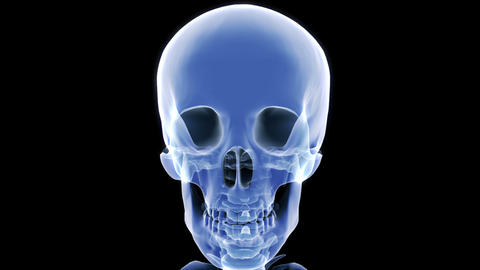 X Ray Skull stock footage