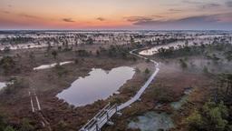 Epic Marshland 0