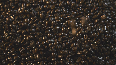 Organic Coffee Beans Falling And Landing On Pile Slow Motion stock footage