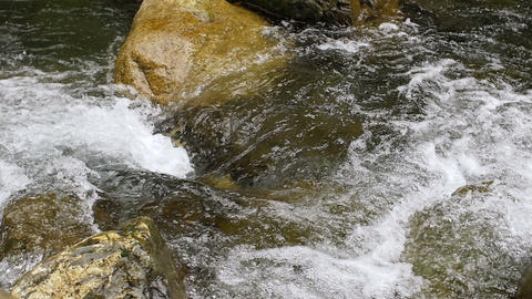 Forest River Flowing Through Rocks with White Water Rapids in Slow Motion Footage