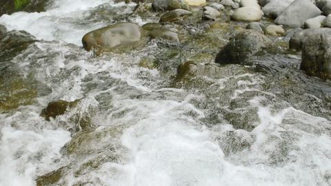 Mountain Forest River Flowing Over Small Waterfalls in Slow Motion Footage