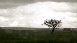 rain 3 Footage