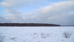 Winter landscape of fields and forest Footage