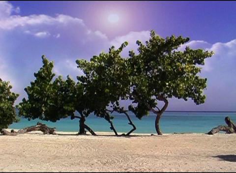 Cloudy Beach Qt 6 Dv stock footage