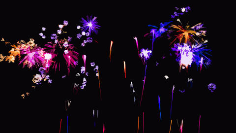 Abstract Firework Show Sketch Animation - Loop Animation