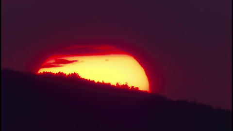 Giant globe of the sun that slips behind the trees at sunset 46a Footage