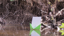 Green paper boat floating on water among thousands of midges 92b Footage