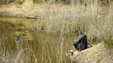 Fisherman fishing by the lake.river reeds in wind,shaking wilderness.elderly,lei Footage