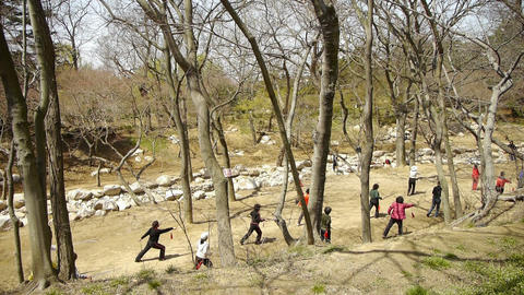 Gymnastics exercise in forest.leisure,oriental,sport,people Stock Video Footage