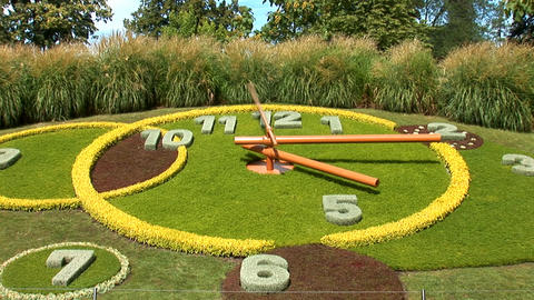 flower clock 5sec g Stock Video Footage