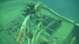 Shipwreck on the Seabed, Red Sea Footage