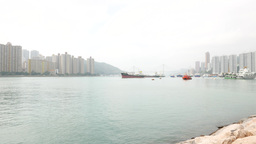 Calm waters of the bay, ships stay on anchor, buildings on the shore Footage