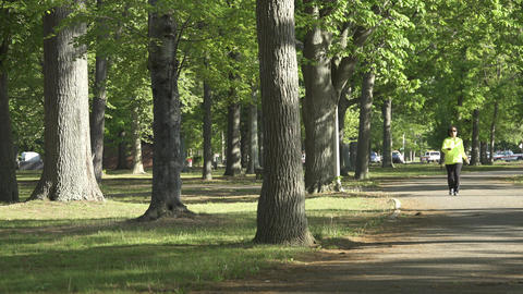People Exercising In The Park (3 Of 3) stock footage