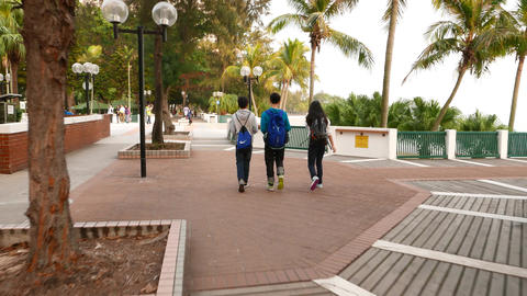Friends walk on sea-front walkway at park, boy stumble on ground Footage
