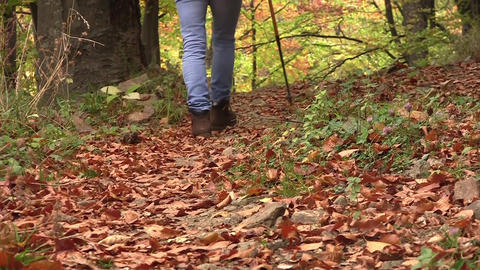 Tourist goes through the woods on a path full of dried leaves 73 Footage