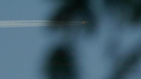 Supersonic aircraft seen through green fir branches 11 Footage
