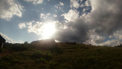 a herd of cattle and a wooden shed on a green hill under a blazing evening sun i Footage