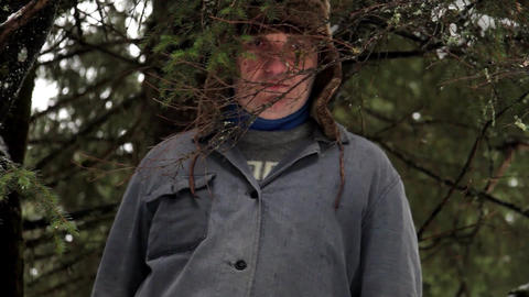 Forestry worker who looks behind some dry fir branches 23 Footage