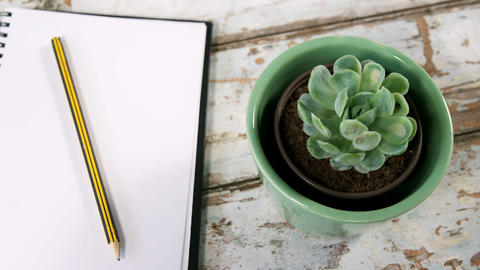 Aloe vera plant, diary with pencil and binder clips Footage