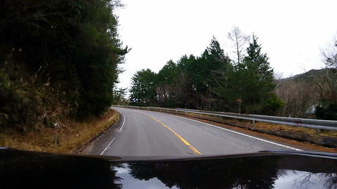 Roof View. The car is running the exit of the forest Footage