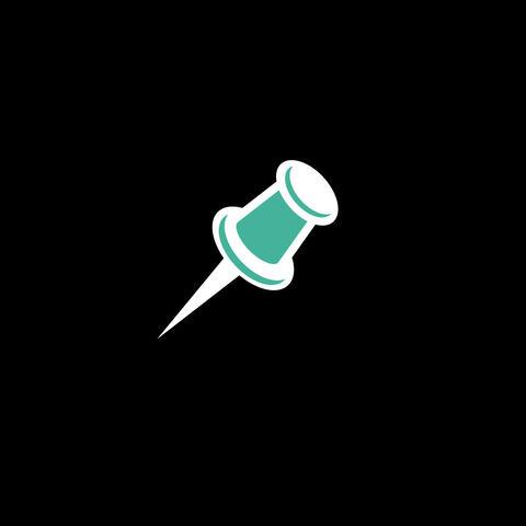 Pin Flat Icon Animation