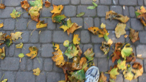 feet walking on the road with autumnal leaves Live Action