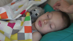 child sleeps with a homemade toy, the mother tenderly stroking sleeping son Live Action