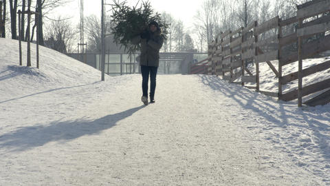 Man Carrying Christmas Tree Live Action