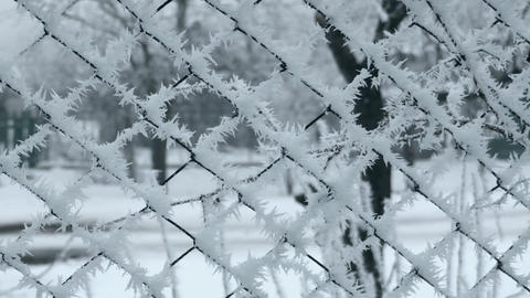 Frosted Mesh Fence in Winter Footage