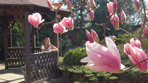 In the lush garden of magnolias. Krasnodar. Russia Stock Video Footage