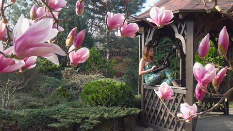 In the lush garden of magnolias. Krasnodar. Russia Footage