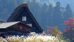 Japan's World Cultural Heritage Nature-rich Shirakawa-go Village DSCF3115 Footage