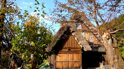 秋の白川郷 Japan's World Cultural Heritage Nature-rich Shirakawa-go Village ライブ動画