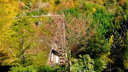 Japan's World Cultural Heritage Nature-rich Shirakawa-go Village DSCF3248 Footage