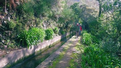 Tourists Walking on Hiking Pathway Levada Waterway Footage