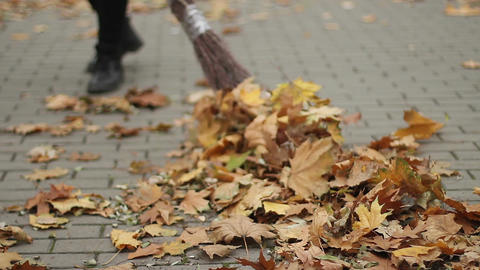 Female cleaning the street, sweeping fallen leaves in park, hard work, low wages Footage