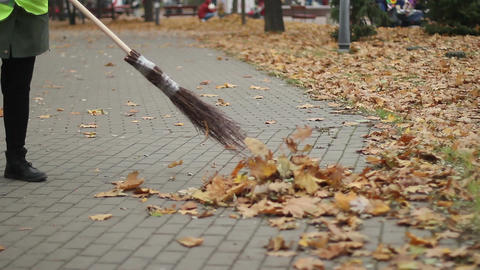 Hardworking cleaning woman sweeping up leaves outdoors at park, low-paid job Footage