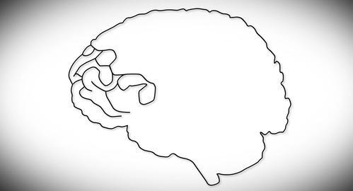 4K Human Brain 03 Stock Video Footage