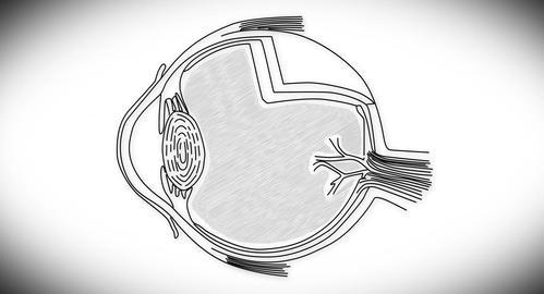 4K Human Eye 03 Stock Video Footage