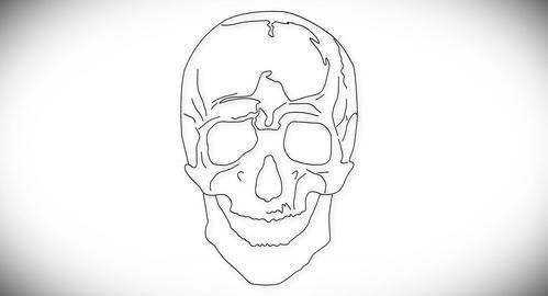 4K Human Skull 01 front Stock Video Footage