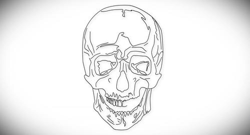 4K Human Skull 03 front Stock Video Footage