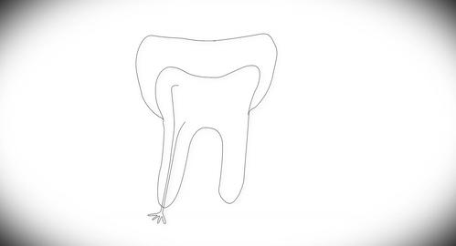 4K Human Tooth Structure 01 Stock Video Footage