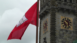 Hamburg City Hall 02 flag Footage