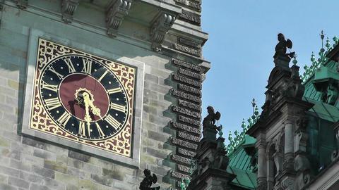 Hamburg City Hall 14 Stock Video Footage