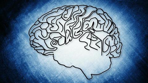 Human Brain 08 Stock Video Footage